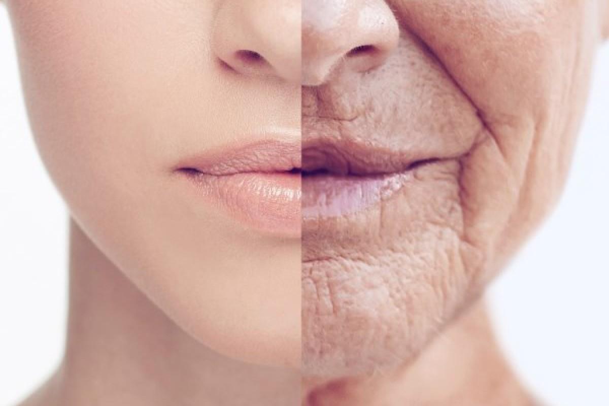 Contrastare l'invecchiamento cutaneo