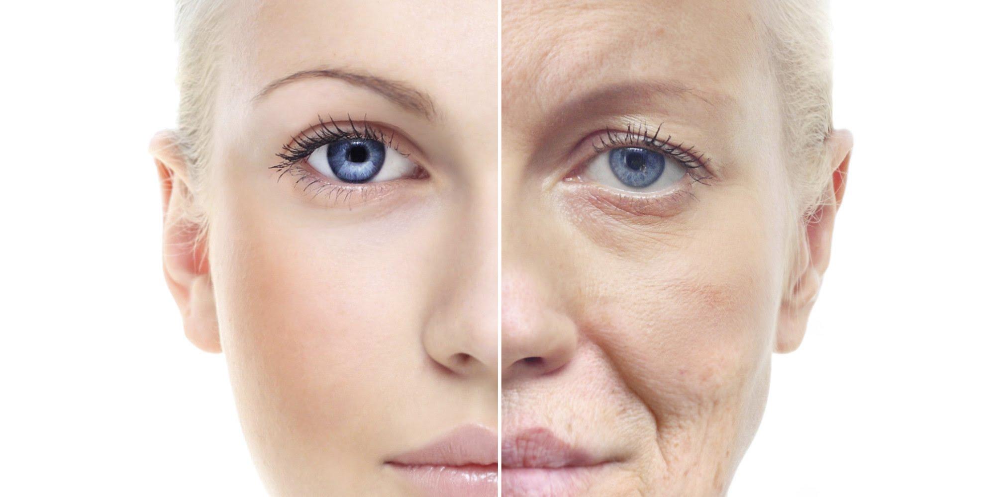 Nutrizione e invecchiamento cutaneo